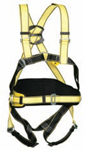 Four Point Safety Harness