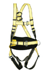Three Point Safety Harness