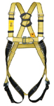 Two Point Safety Harness